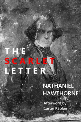 scarlet letter diary The scarlet letter activity: character letter, diary, or journal entry one of the great joys of reading literature is that not everything is explained authors sometimes leave us wondering about why a character makes the decisions he or she makes.